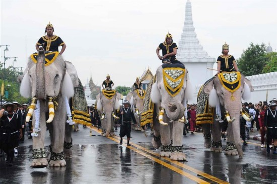 Elefantes en el homenaje al fallecido rey de Tailandia